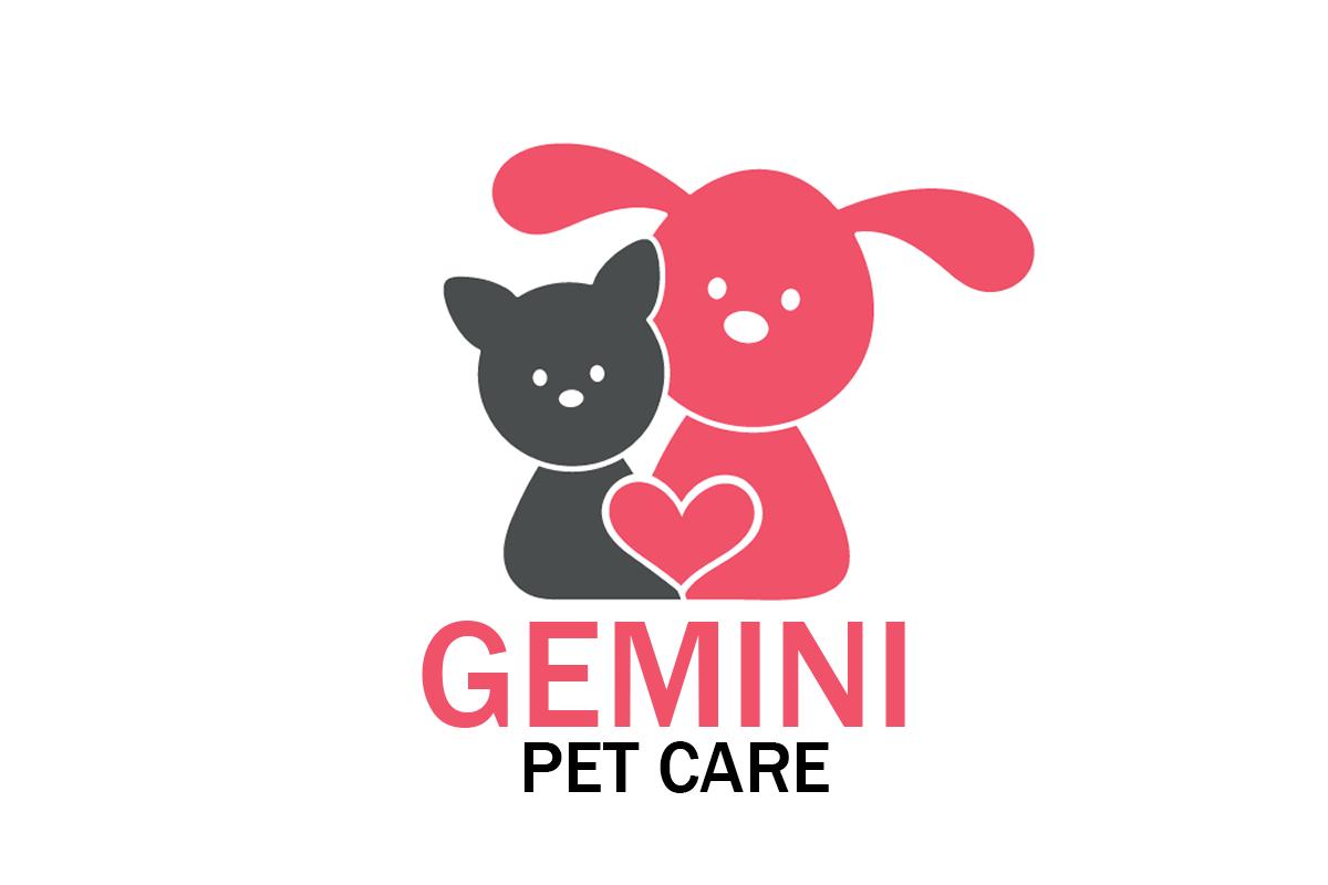 Gemini Pet Care Blog Post